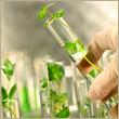 منح من اليونسكو لمشاريع بحثية فى مجال الكيمياء الخضراء