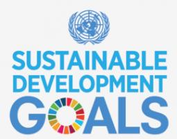 269px-UN_SDG_Logo
