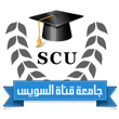 Reducing the participation of researchers from the Arab Republic of Egypt