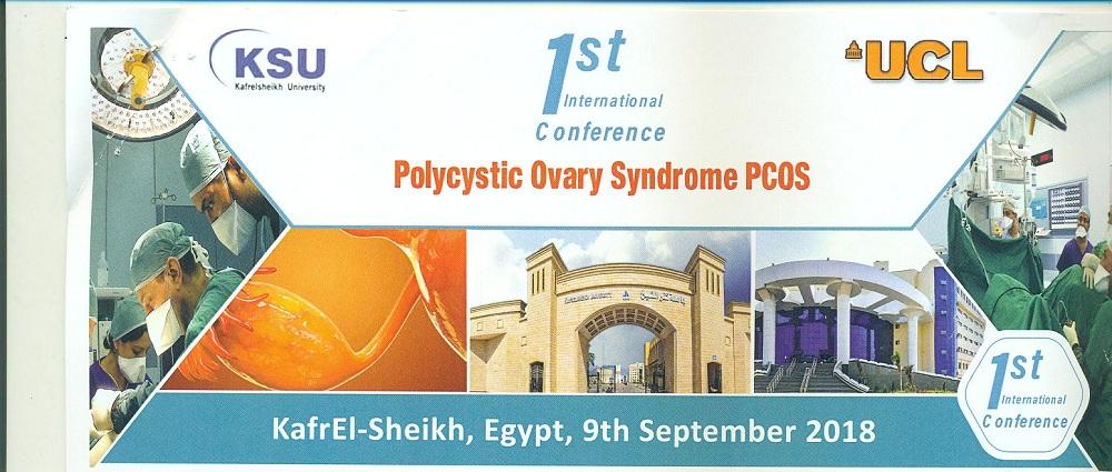 Invitation adressée à l'université Canal de Suez pour assister à la 1ème édition de la conférence internationale de la faculté de médecine à l'université Kafr-El Sheikh
